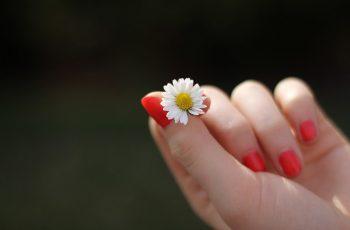 Odżywka do paznokci